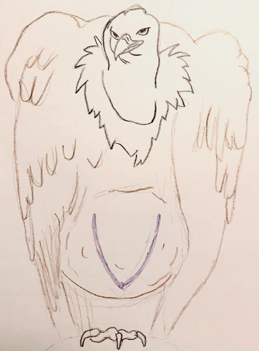 V is for ventral-vulture
