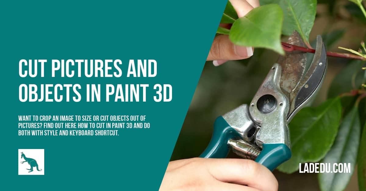 How to Crop in Paint 3D - La De Du